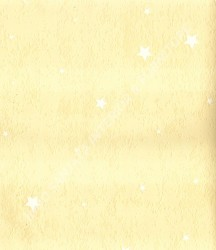 wallpaper SUNSHINE BOY-2:SE0803 corak warna